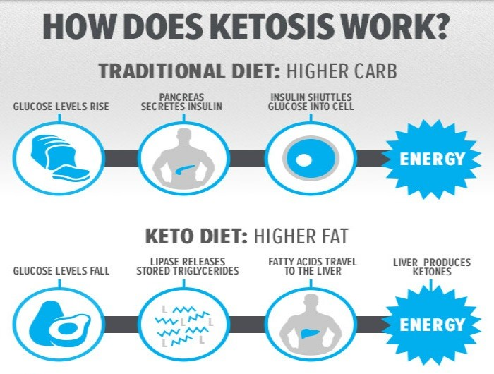 Fat Is a Better Fuel Source vs Carbs for Active People ...